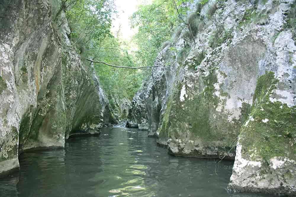 Brnjička reka